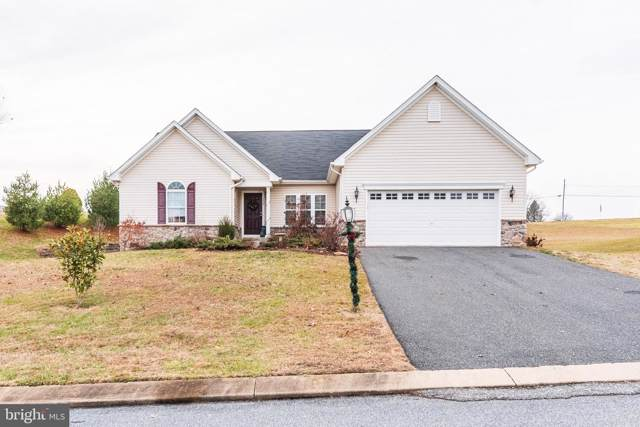 159 Misty Hill Drive, DELTA, PA 17314 (#PAYK130676) :: The Joy Daniels Real Estate Group