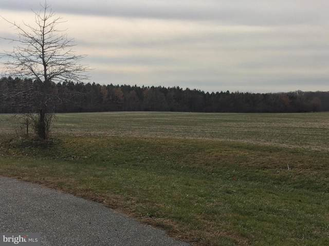 Natural Drive, CENTREVILLE, MD 21617 (#MDQA142522) :: Bob Lucido Team of Keller Williams Integrity