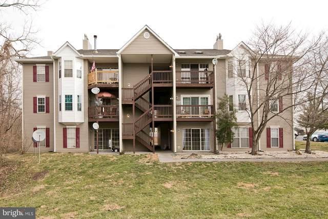 106-10 Timberlake Terrace, STEPHENS CITY, VA 22655 (#VAFV154950) :: LoCoMusings