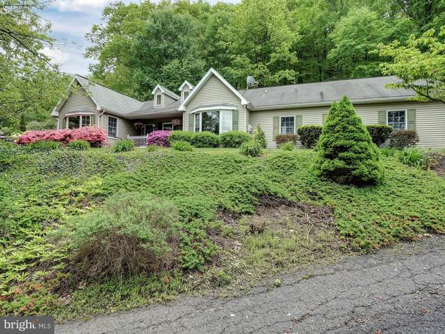 1285 Oak Terrace Road, POTTSVILLE, PA 17901 (#PASK129282) :: The Heather Neidlinger Team With Berkshire Hathaway HomeServices Homesale Realty