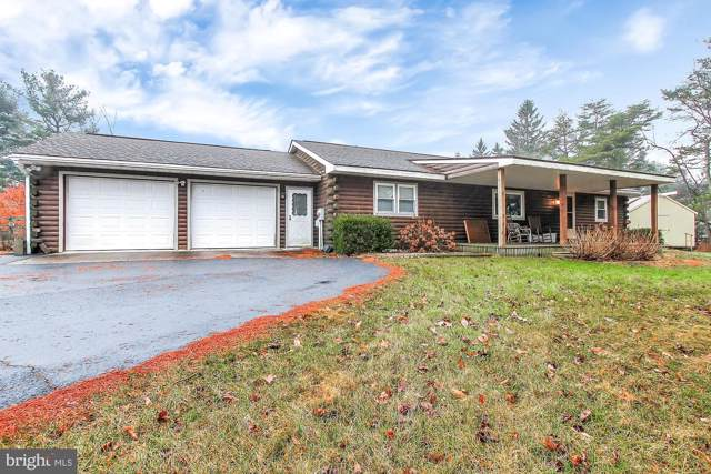 990 Summer Hill Road, AUBURN, PA 17922 (#PASK129290) :: Ramus Realty Group
