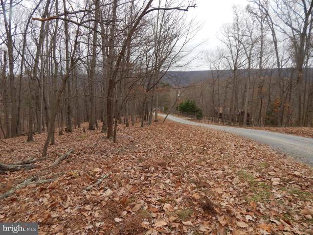 Pioneer Trail, GREAT CACAPON, WV 25422 (#WVMO116368) :: Radiant Home Group