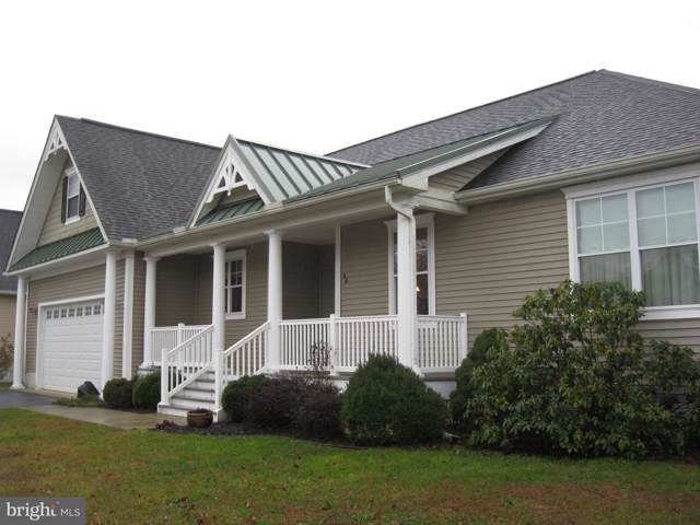 44 Sandy Branch Drive, SELBYVILLE, DE 19975 (#DESU153470) :: Viva the Life Properties