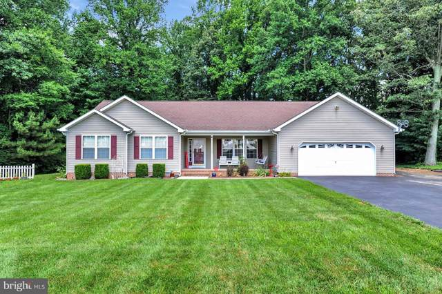 4 Winding Wood Drive, MAGNOLIA, DE 19962 (#DEKT234982) :: Brandon Brittingham's Team
