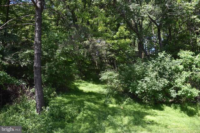 1199 Wynonah Drive, AUBURN, PA 17922 (#PASK129312) :: Talbot Greenya Group