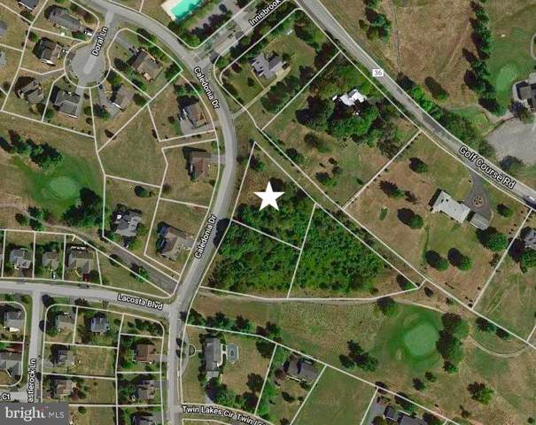 Lot 3 Caledonia Drive, MARTINSBURG, WV 25405 (#WVBE173990) :: Pearson Smith Realty
