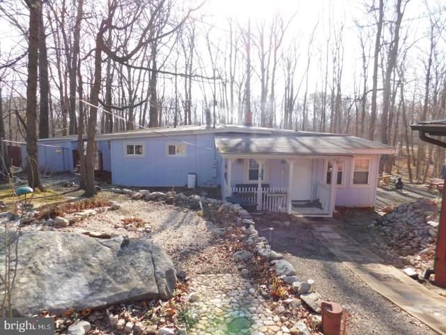 221 Cougar Trail, WINCHESTER, VA 22602 (#VAFV155098) :: Dart Homes