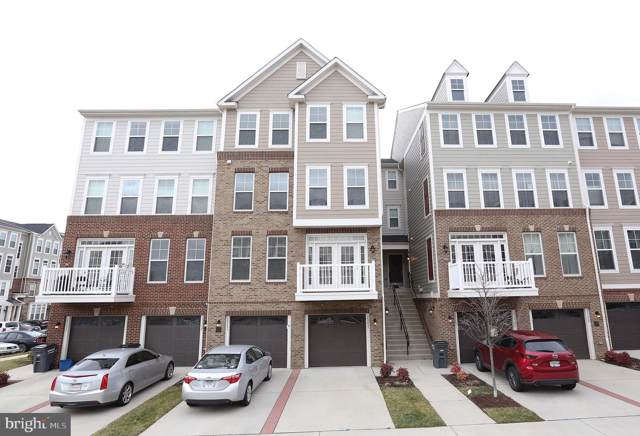 25253 Orchard View Terrace, CHANTILLY, VA 20152 (#VALO401138) :: The Sky Group