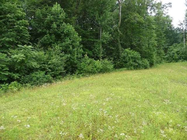 Lot 20 Stanley Drive, PALMYRA, PA 17078 (#PALN111976) :: Flinchbaugh & Associates