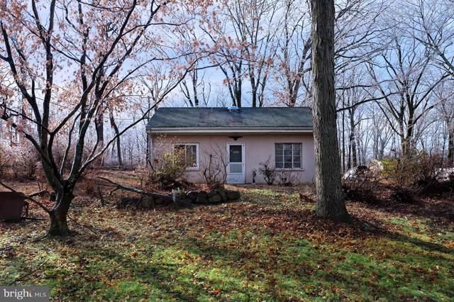 211 Rosemont Ringoes Road, STOCKTON, NJ 08559 (#NJHT105874) :: Shamrock Realty Group, Inc