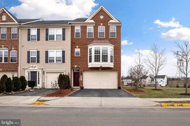25421 Peaceful Terrace, ALDIE, VA 20105 (#VALO401218) :: Pearson Smith Realty