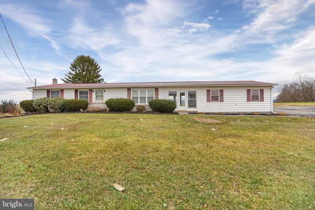 6191 Route 225, ELIZABETHVILLE, PA 17023 (#PADA118242) :: Iron Valley Real Estate