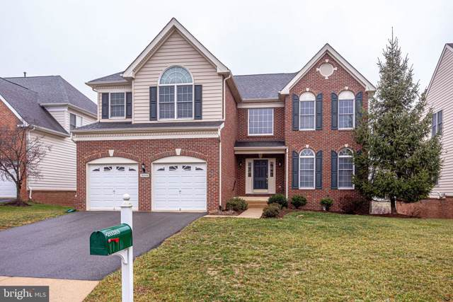 20389 Medalist Drive, ASHBURN, VA 20147 (#VALO401244) :: The Greg Wells Team