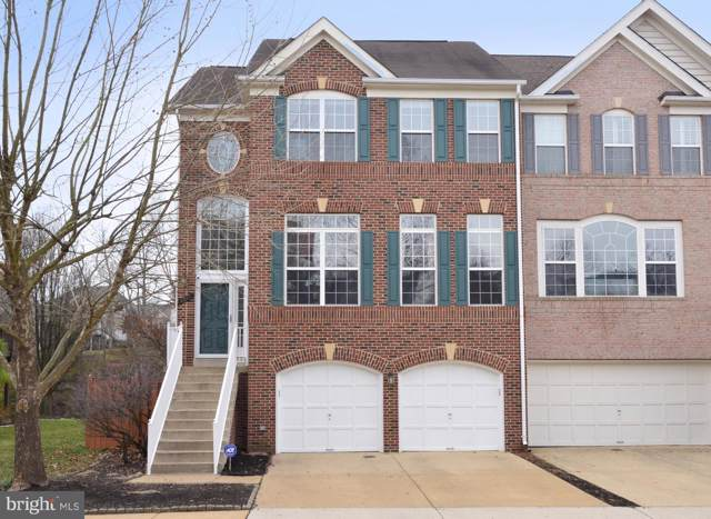 43049 Northlake Overlook Terrace, LEESBURG, VA 20176 (#VALO401320) :: LoCoMusings