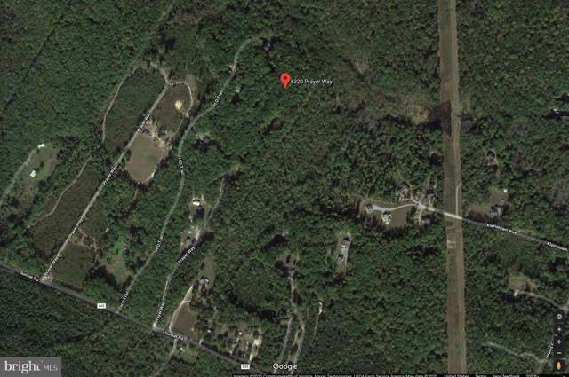6320 Prayer Way, SPOTSYLVANIA, VA 22551 (#VASP218734) :: Colgan Real Estate