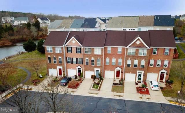 43033 Northlake Overlook Terrace, LEESBURG, VA 20176 (#VALO401356) :: The Greg Wells Team