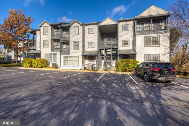10 Ericsson Avenue #33, BETTERTON, MD 21610 (#MDKE116108) :: The Maryland Group of Long & Foster Real Estate