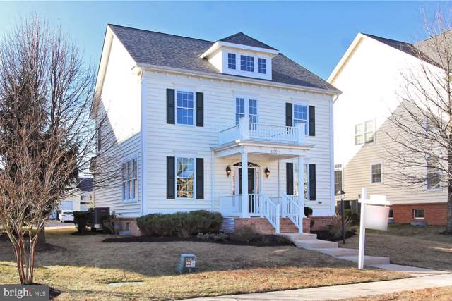 42513 Ringneck Place, BRAMBLETON, VA 20148 (#VALO401414) :: Seleme Homes