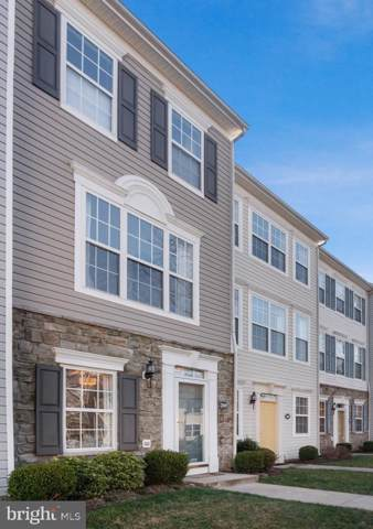 21859 Goodwood Terrace, ASHBURN, VA 20147 (#VALO401456) :: The Bob & Ronna Group