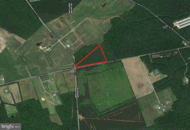 0 Cattail Branch Road, GREENWOOD, DE 19950 (#DEKT235338) :: Atlantic Shores Sotheby's International Realty