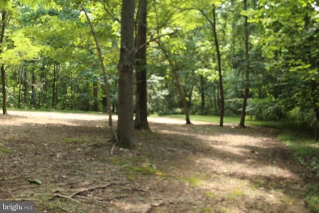 Red Hille Way, BENTONVILLE, VA 22610 (#VAWR139100) :: Great Falls Great Homes