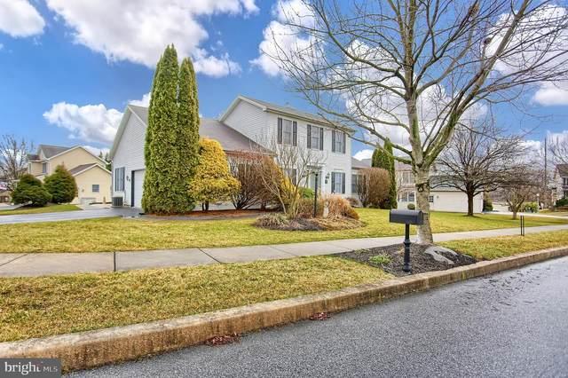 503 Hawk View Road, HUMMELSTOWN, PA 17036 (#PADA118378) :: The Joy Daniels Real Estate Group