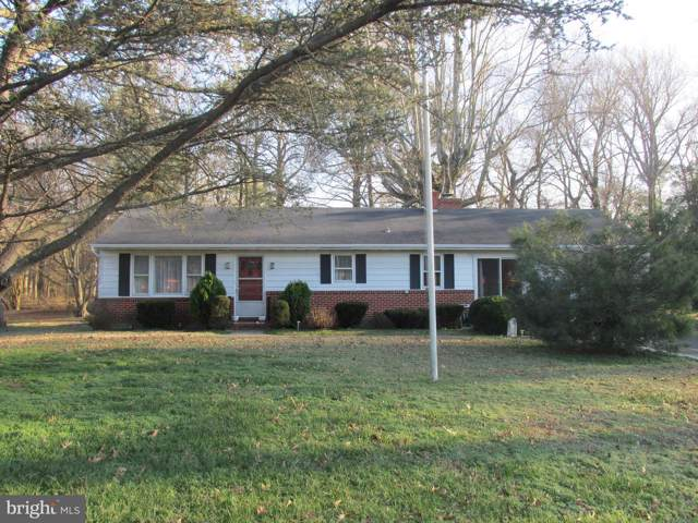 5611 Mount Holly Road, EAST NEW MARKET, MD 21631 (#MDDO124872) :: Bob Lucido Team of Keller Williams Integrity
