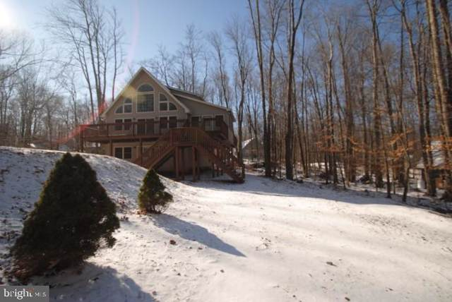 363 Ridge Rd, POCONO LAKE, PA 18347 (#PAMR105644) :: Talbot Greenya Group