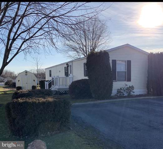 249 Austin Drive, GRANTVILLE, PA 17028 (#PADA118458) :: ExecuHome Realty