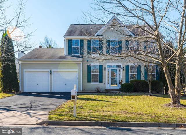 17539 Falls Place, ROUND HILL, VA 20141 (#VALO401684) :: AJ Team Realty