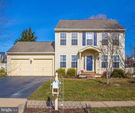 17244 Magic Mountain Drive, ROUND HILL, VA 20141 (#VALO401736) :: Peter Knapp Realty Group