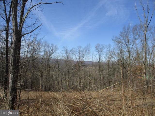 Highland Ridge Road, BERKELEY SPRINGS, WV 25411 (#WVMO116412) :: The Miller Team