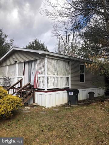 128 Angel Drive, NEW RINGGOLD, PA 17960 (#PASK129442) :: The Joy Daniels Real Estate Group