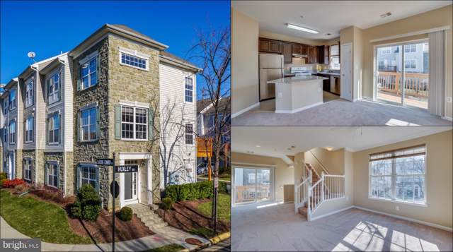 21756 Dragons Green Square, ASHBURN, VA 20147 (#VALO401764) :: The Vashist Group