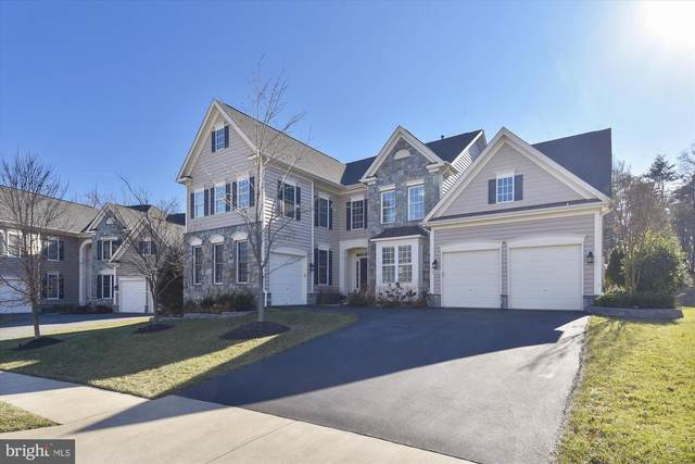 42409 Moreland Point Court, ASHBURN, VA 20148 (#VALO401766) :: AJ Team Realty