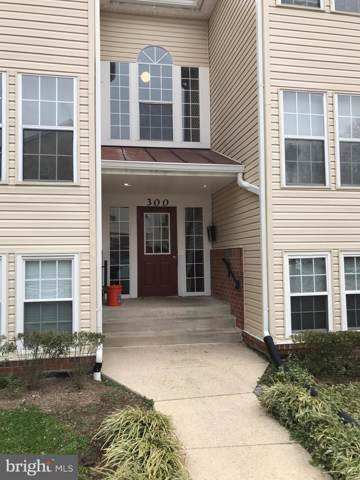 300 Juneberry Way 2D, GLEN BURNIE, MD 21061 (#MDAA423254) :: Bruce & Tanya and Associates