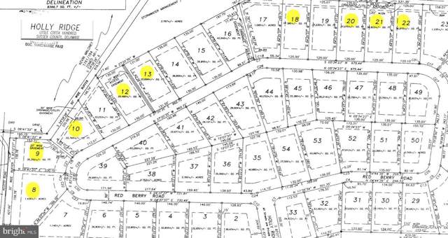 36856 Red Berry Road, DELMAR, DE 19940 (#DESU154452) :: Berkshire Hathaway Home Services PenFed Realty