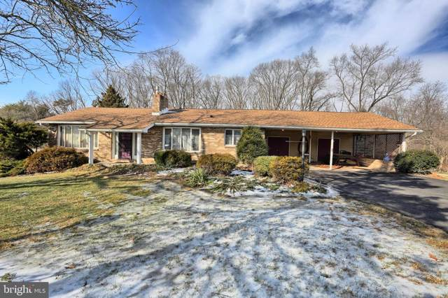 44 Hill Drive, HALIFAX, PA 17032 (#PADA118540) :: Viva the Life Properties