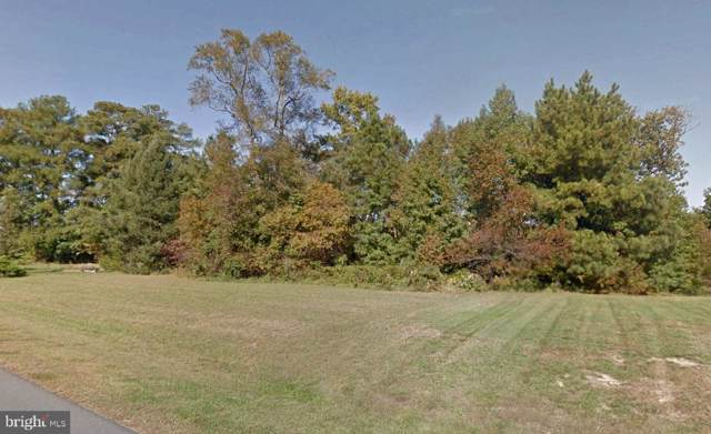 LOT 35 Seagull Road, SELBYVILLE, DE 19975 (#DESU154518) :: RE/MAX Coast and Country