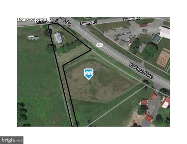 372 Mush Dahl Road C, NEW RINGGOLD, PA 17960 (#PASK129474) :: Ramus Realty Group