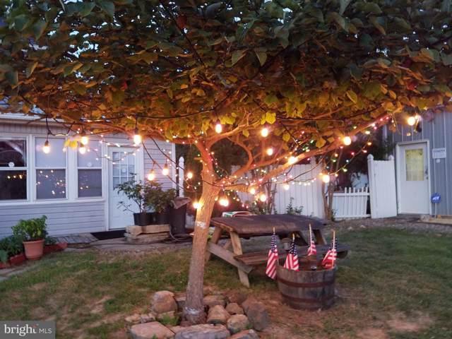 135 Lora Drive, WOODSTOCK, VA 22664 (#VASH118174) :: Seleme Homes