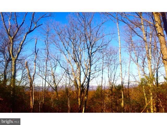 Eagles Nest Lane, CASTLETON, VA 22716 (#VARP107084) :: The Sky Group
