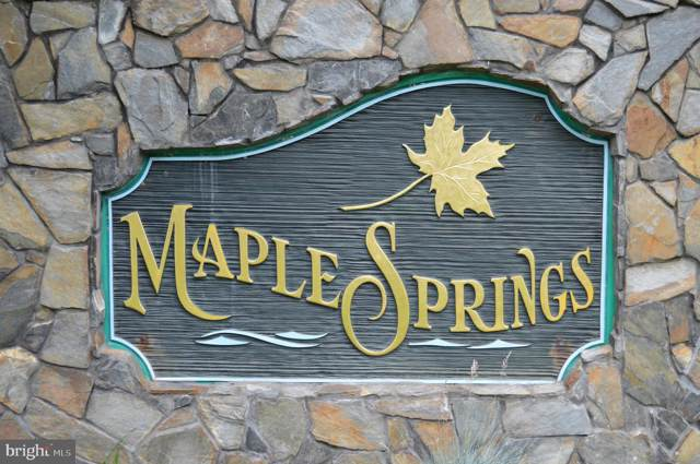 Lot 48 Maple Springs, MINERAL, VA 23117 (#VALA120468) :: Homes to Heart Group