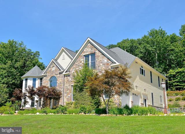 3718 S Mountains Road S, HAYMARKET, VA 20169 (#VAPW486110) :: A Magnolia Home Team