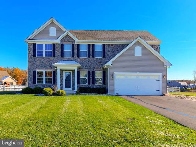 25709 Salt Grass Road, MILLSBORO, DE 19966 (#DESU154650) :: Atlantic Shores Realty
