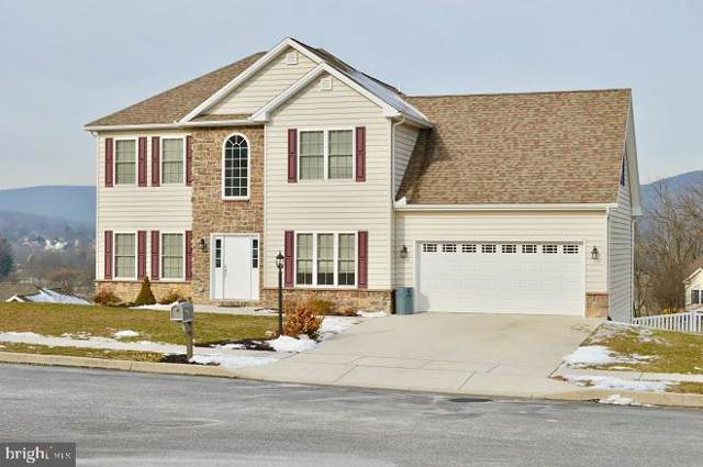 34 Grandview Court, DILLSBURG, PA 17019 (#PAYK131992) :: The Joy Daniels Real Estate Group