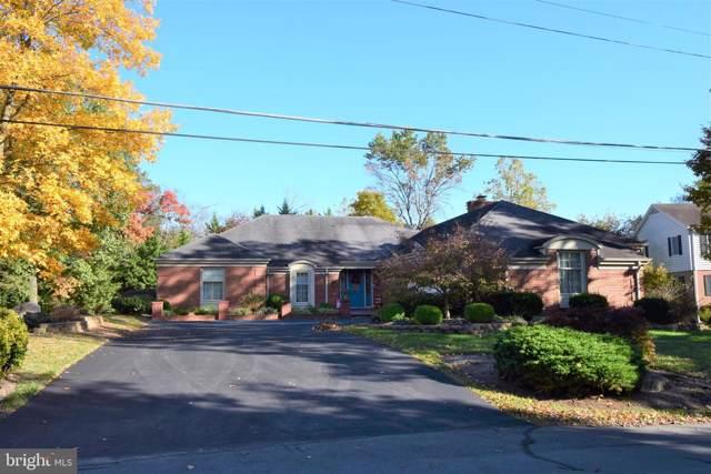 115 Oak Ridge Lane, WINCHESTER, VA 22602 (#VAFV155304) :: Pearson Smith Realty