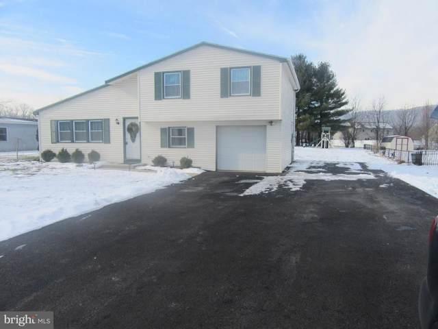 159 Monroe Valley Drive, JONESTOWN, PA 17038 (#PALN112158) :: Iron Valley Real Estate