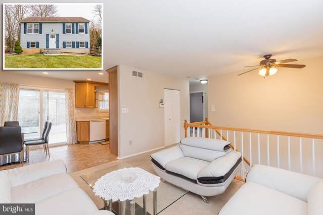 4701 Hale Haven Drive, ELLICOTT CITY, MD 21043 (#MDHW274692) :: Radiant Home Group