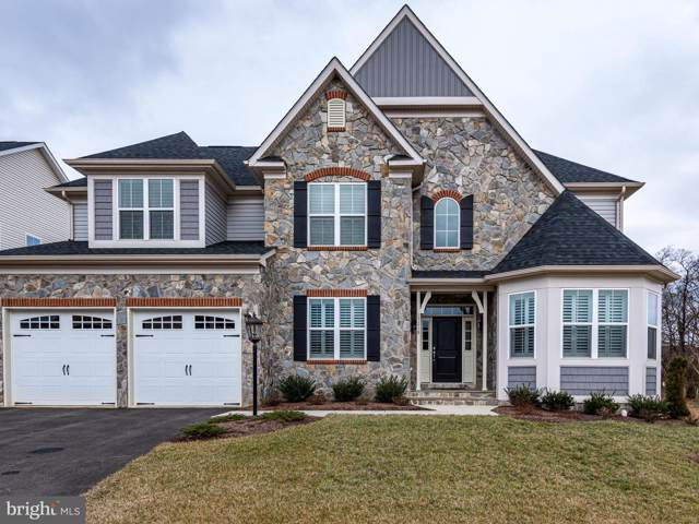 17218 Creekside Green Place, ROUND HILL, VA 20141 (#VALO402080) :: Peter Knapp Realty Group